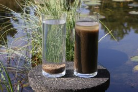 Nereda biomass (left) and activated sludge (right) after only 5 minutes of settling
